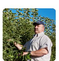 Laastedrif-grower